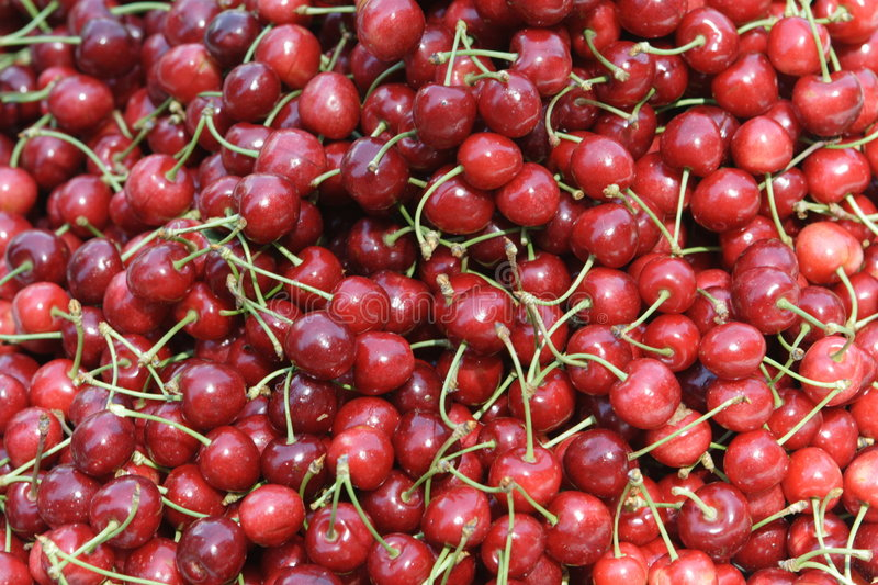 Download Cherry fruits stock photo. Image of many, fruity, fresh - 7164886