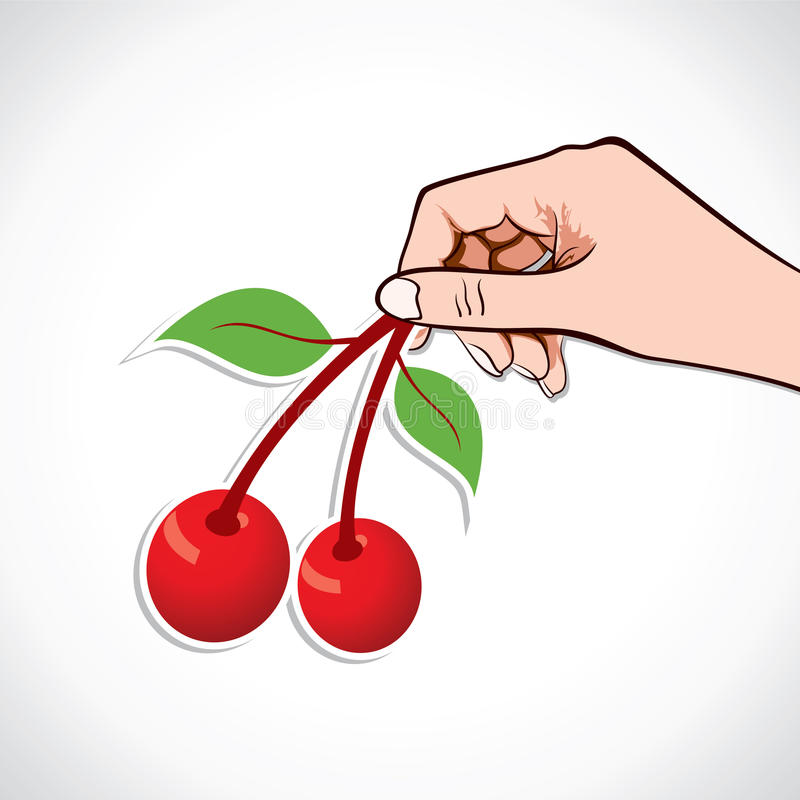 Download Cherry in hand stock vector. Illustration of closeup - 28543821