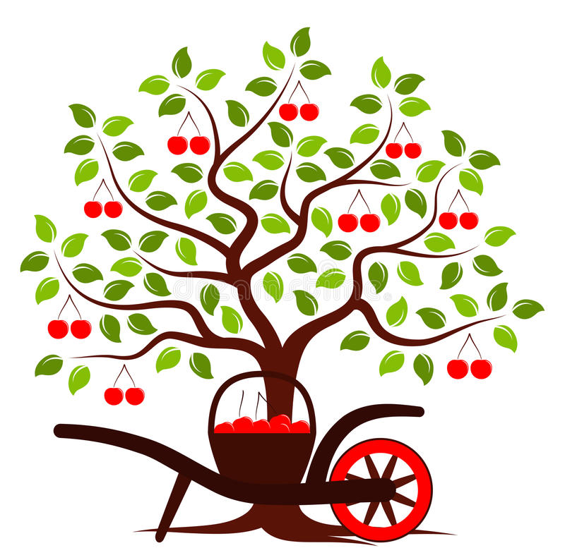 Cherry Harvest vector illustratie