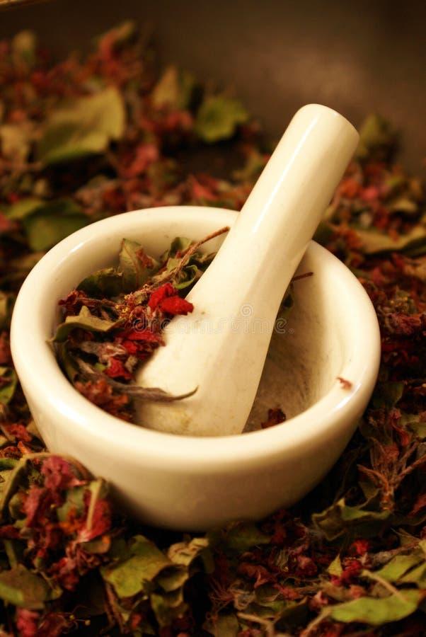 Cherry Herbals Preparation oscuro imagen de archivo