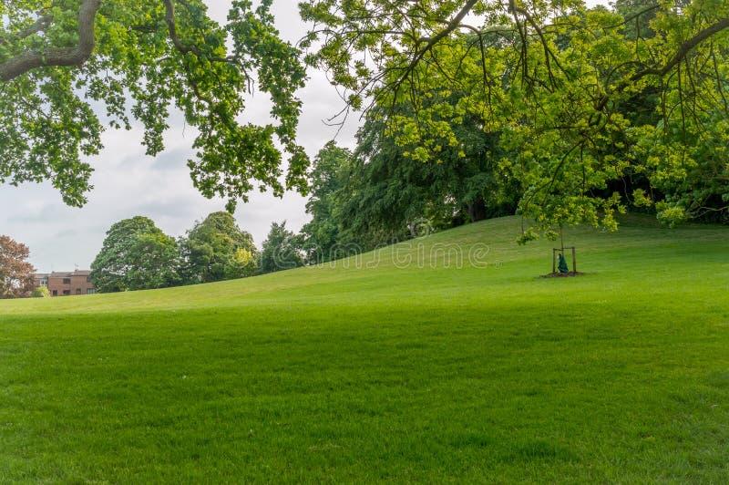 Cherry Hill Park tegenover Ely Cathedral dichtbij Cambridge, Cambridgeshire stock fotografie