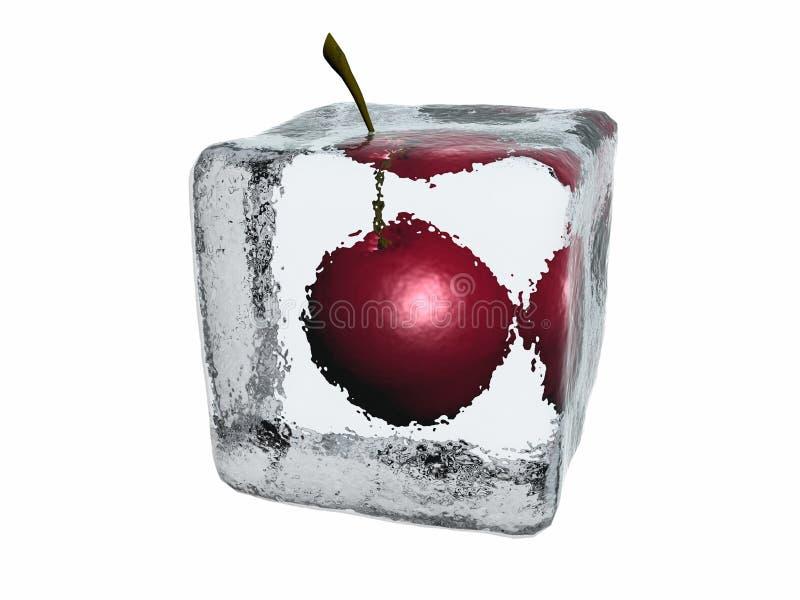 Cherry in ice cube vector illustration