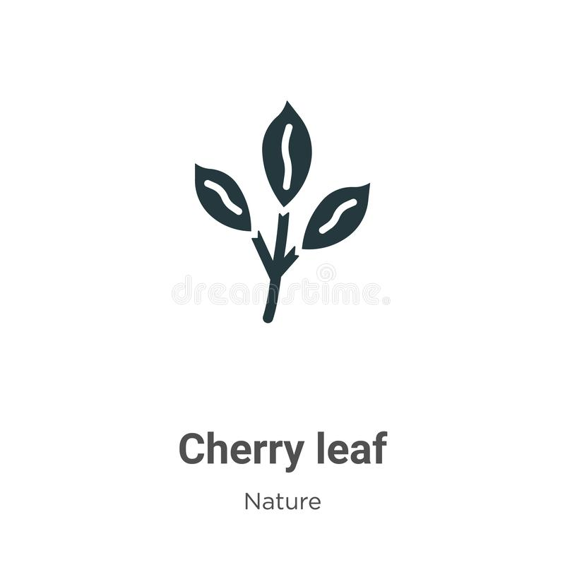 Cherry leaf vector icon on white background. Flat vector cherry leaf icon symbol sign from modern nature collection for mobile royalty free illustration