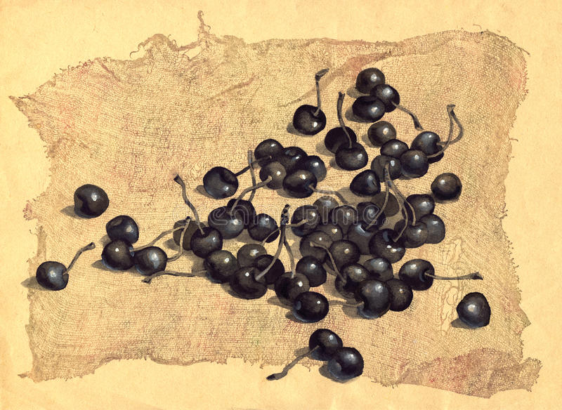 Download Cherry on the old canvas stock illustration. Image of black - 13133087