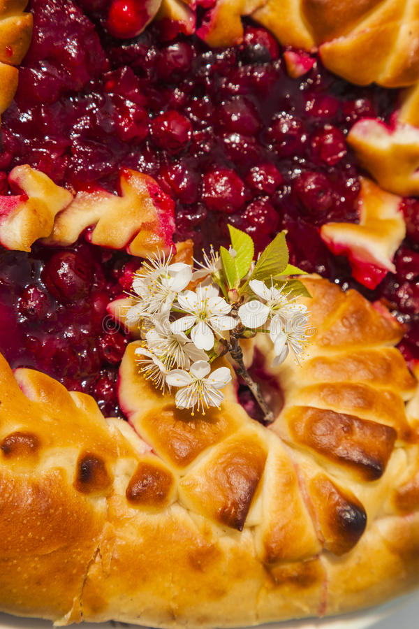 Cherry Pie lizenzfreie stockfotos