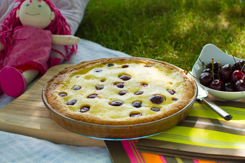 Cherry pie picnic in the garden royalty free stock images