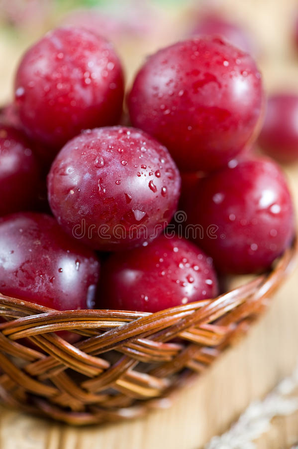Download Cherry plum stock photo. Image of ripe, juicy, berry - 25579050