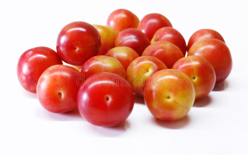 Cherry plums royalty free stock photo