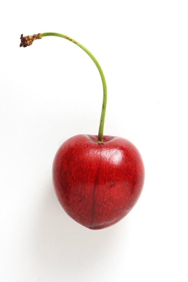 Cherry Pojedyncza Fotografia Royalty Free
