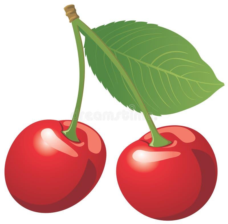 cherry pojedynczy czerwony white zdjęcie stock
