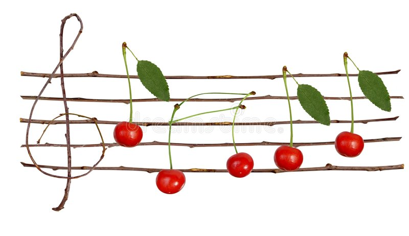 Cherry staves stock photography
