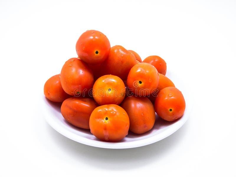 Cherry Tomato lizenzfreies stockfoto