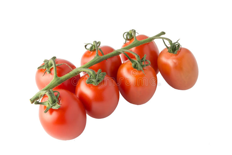 Cherry tomato bunch closeup isolated on white background stock photography