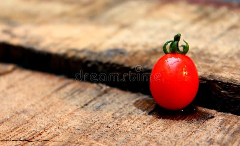Cherry Tomato-Hintergrund mit Holz lizenzfreie stockfotos