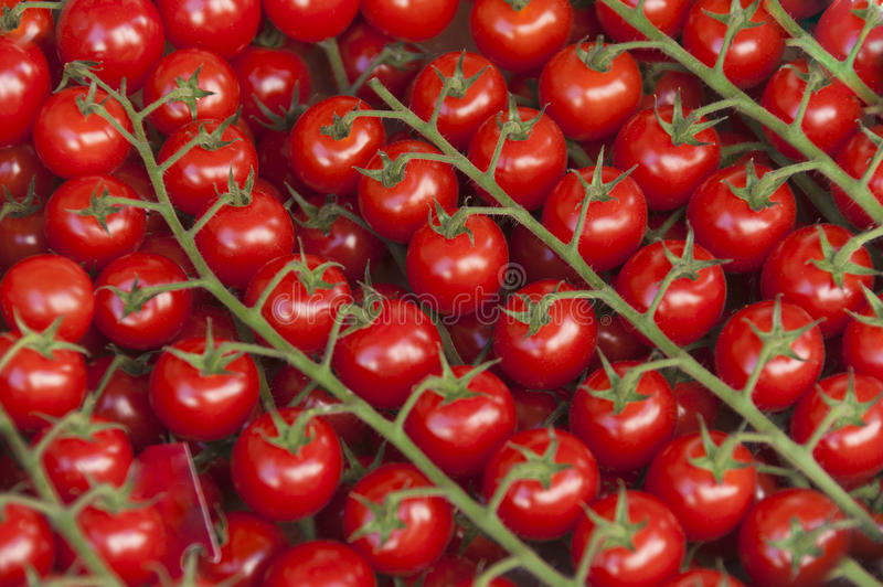 Download Cherry Tomatoes Royalty Free Stock Photography - Image: 27147327