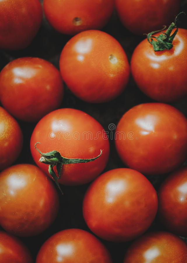 Cherry Tomatoes lizenzfreie stockfotografie