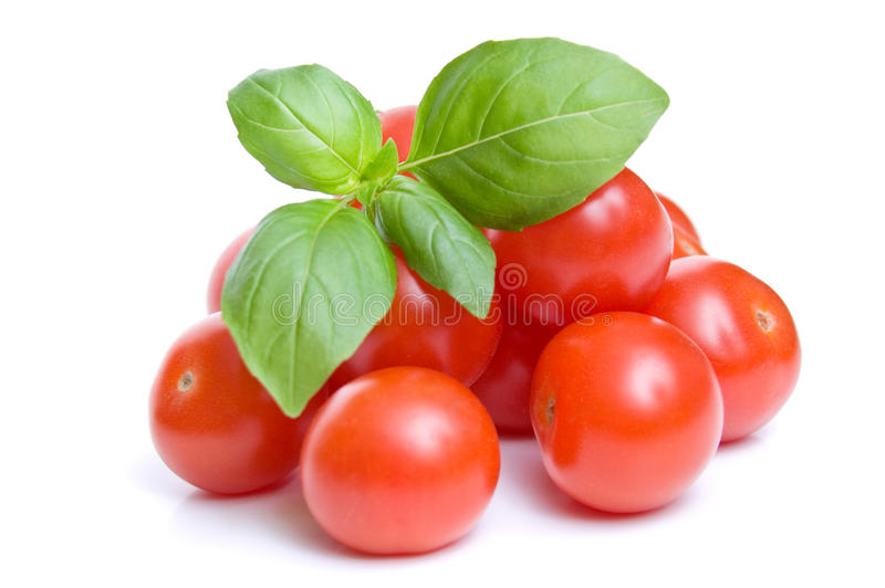 Cherry tomatoes and basil. Fresh cherry tomatoes and a sprig of basil isolated on white stock photo