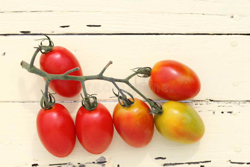 Download Cherry tomatoes stock photo. Image of cherry, plant, edible - 32095336