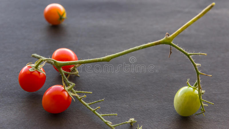 Cherry Tomatoes Close Up Image royalty-vrije stock fotografie