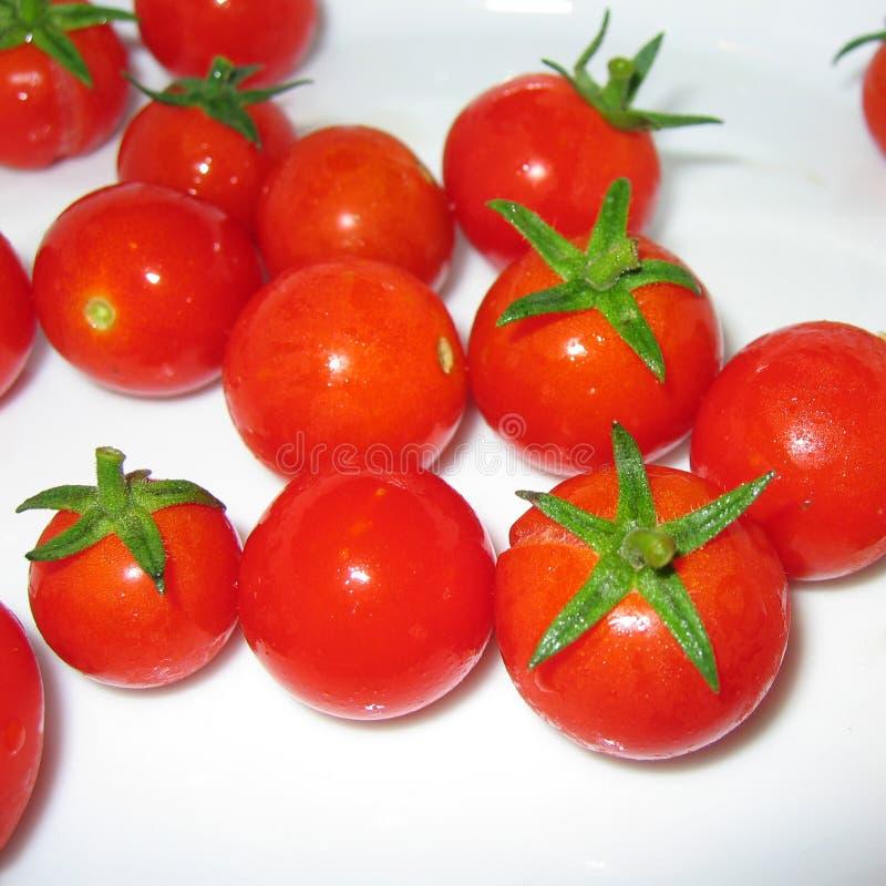 Cherry Tomatoes Closeup stock afbeeldingen