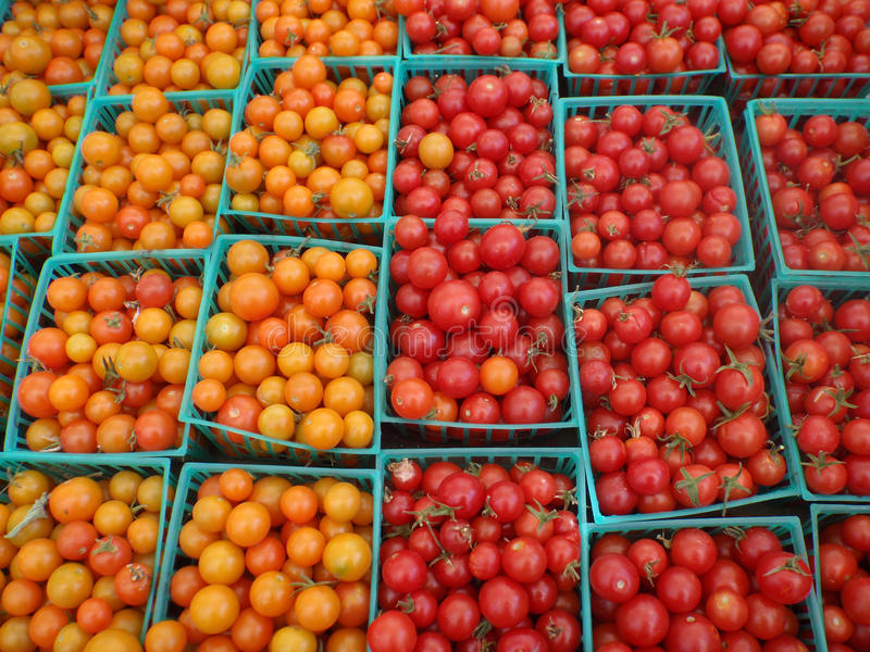 Cherry Tomatoes with colors half red, half orange stock images