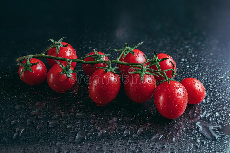 Cherry tomatoes covered by water drops isolated on black background stock image