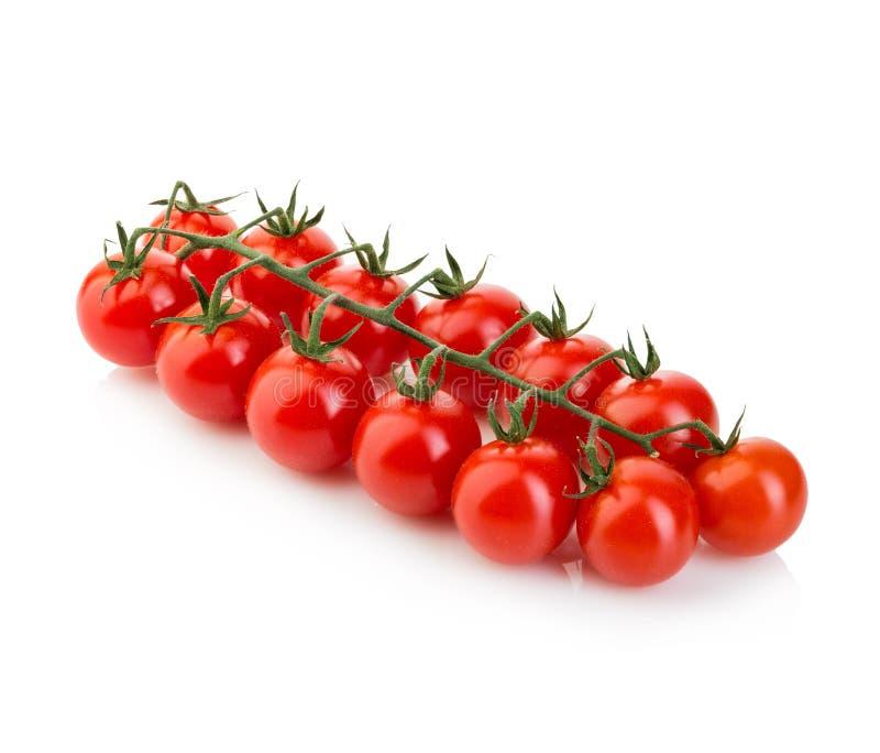 Cherry Tomatoes fresco maturo sul ramo isolato su fondo bianco fotografie stock