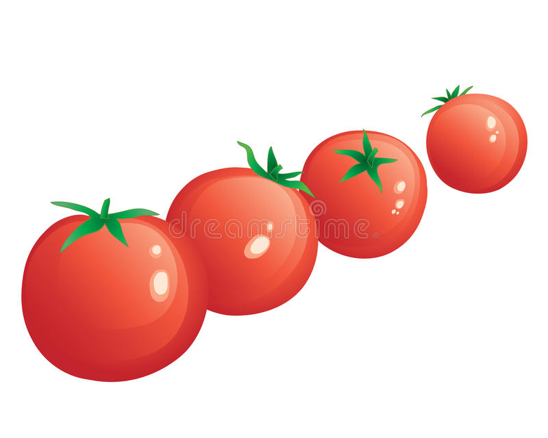 Download Cherry tomatoes stock vector. Illustration of copyspace - 32357894