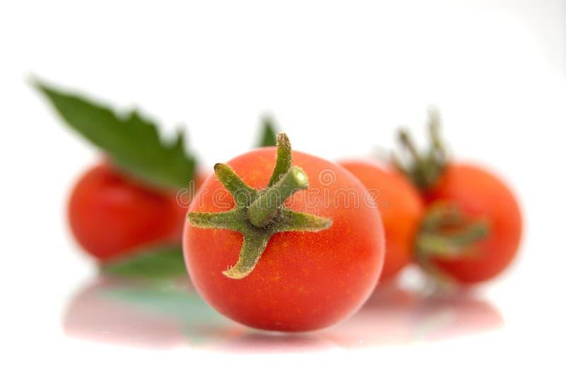 Download Cherry tomatoes stock image. Image of organic, orange - 29749199