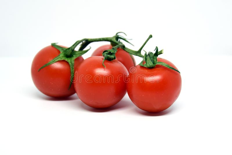 Cherry tomatoes on a twig on a white background stock photography
