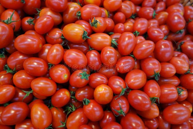 Cherry Tomatos foto de stock