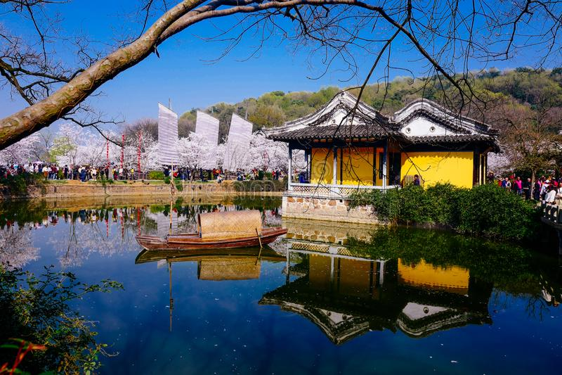 Cherry Blossom valley,wuxi,china stock images