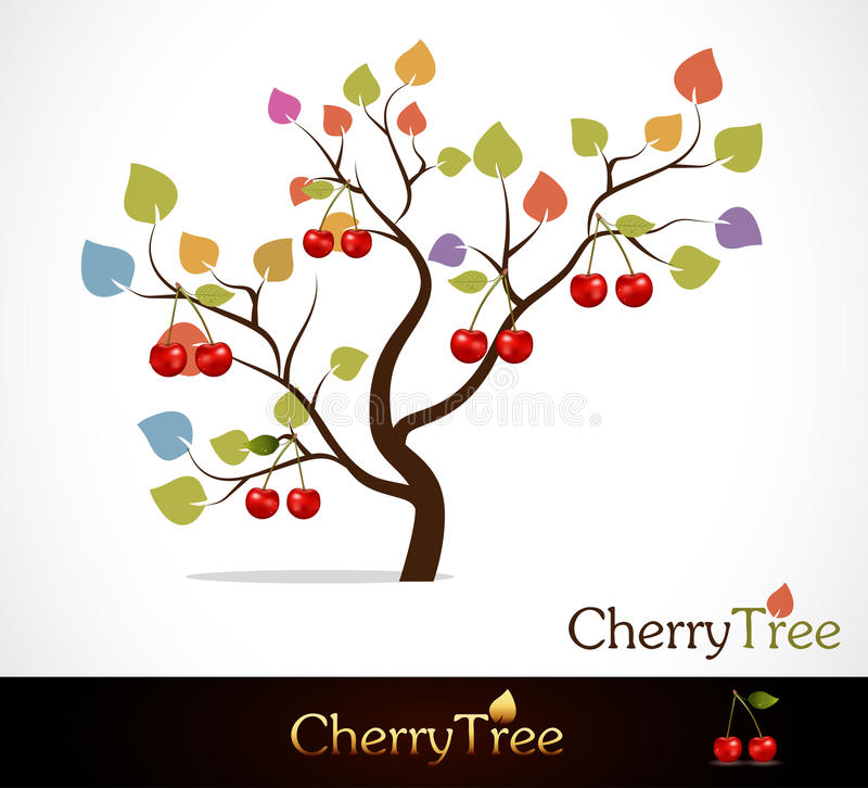 Free Cherry Tree Stock Images - 21375054