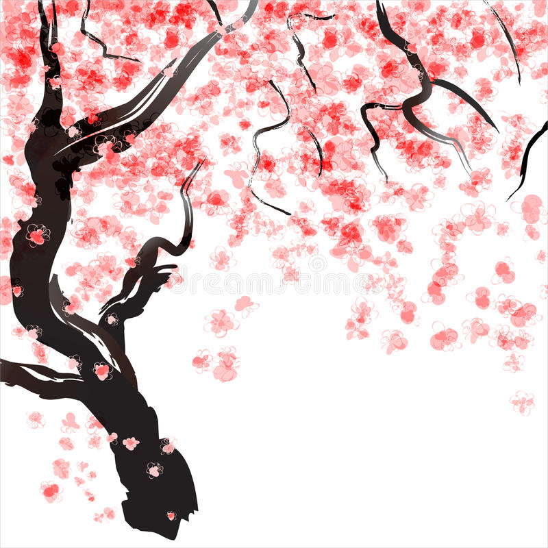 Free Cherry Tree Blossom Stock Photography - 28830692