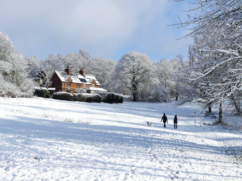 Cherry Tree Dell, terrain communal de Chorleywood, Chorleywood dans la neige d'hiver photographie stock