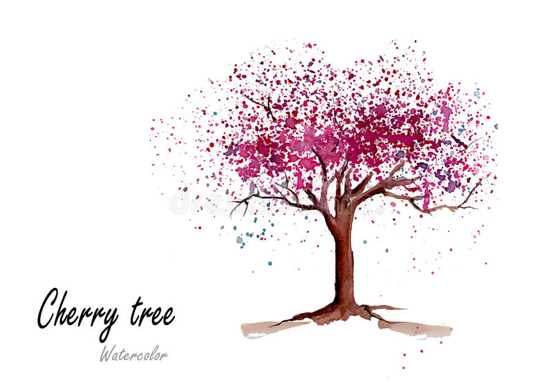 Cherry Tree Hand Drawn Watercolor Painting On White