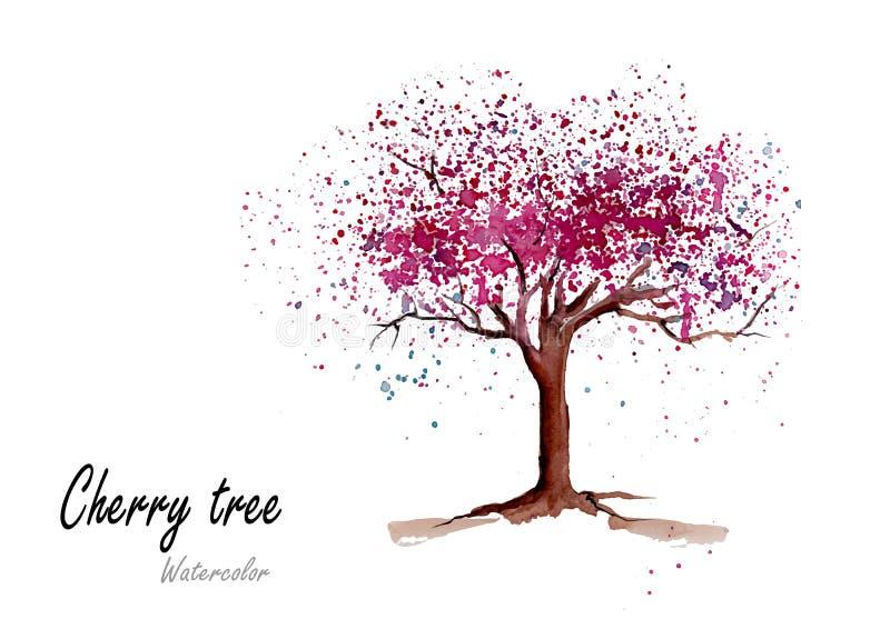 Cherry Tree Peinture tirée par la main d'aquarelle sur le fond blanc illustration stock