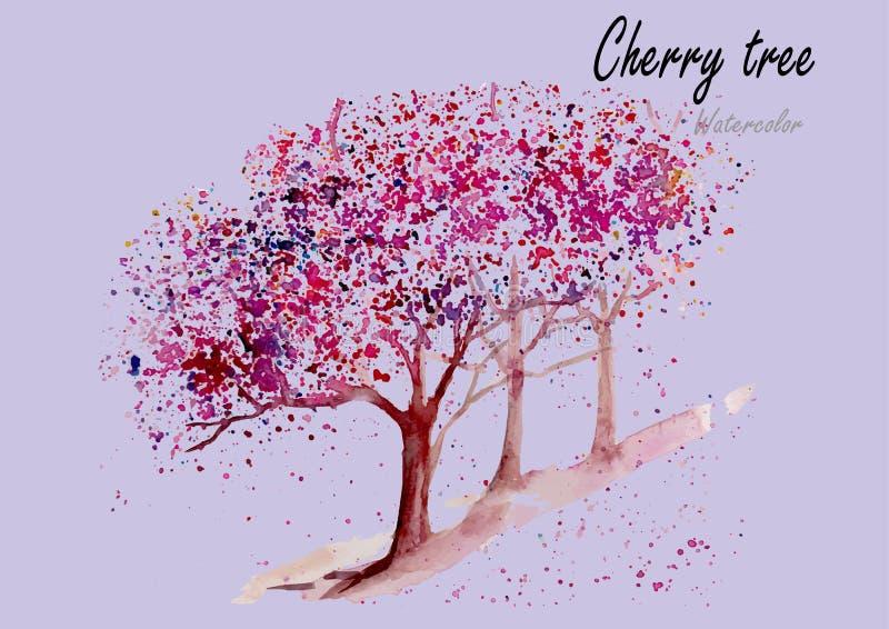 Cherry Trees Peinture tirée par la main d'aquarelle sur le fond blanc illustration stock