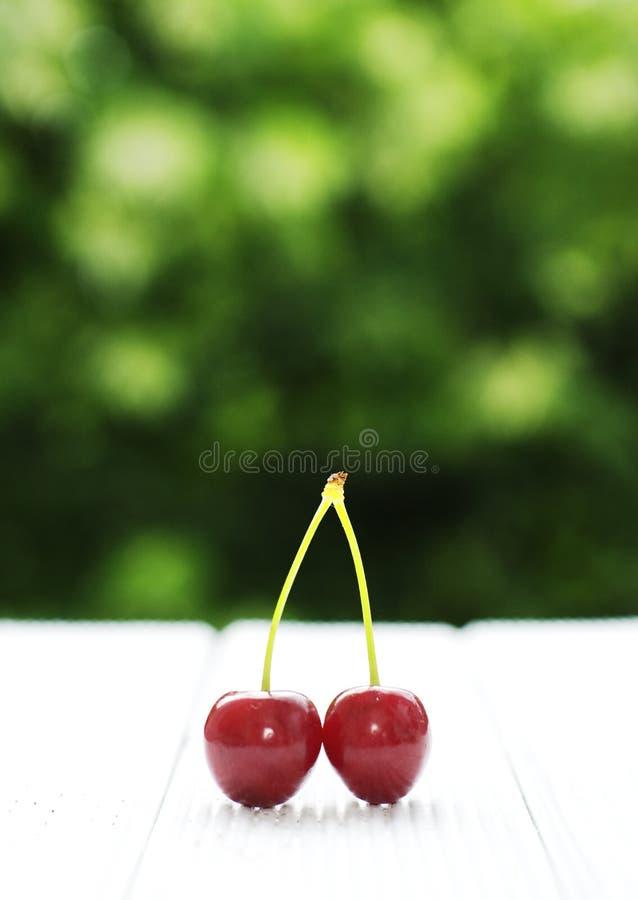 Cherry två royaltyfri fotografi