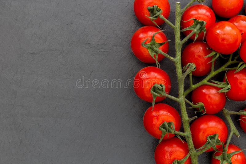 Cherry vine tomatoes on dark background with copy space. Cherry vine tomatoes on dark slate background with copy space royalty free stock image