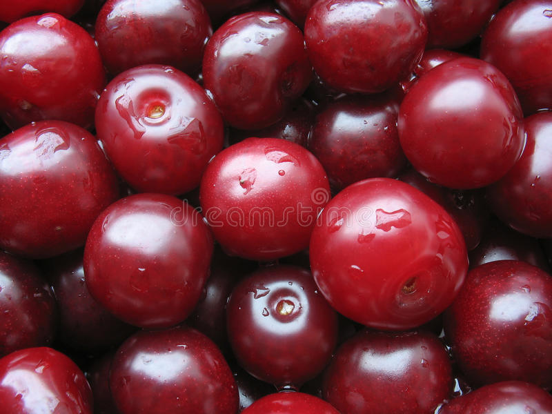 Cherry with water drops, berry background stock images
