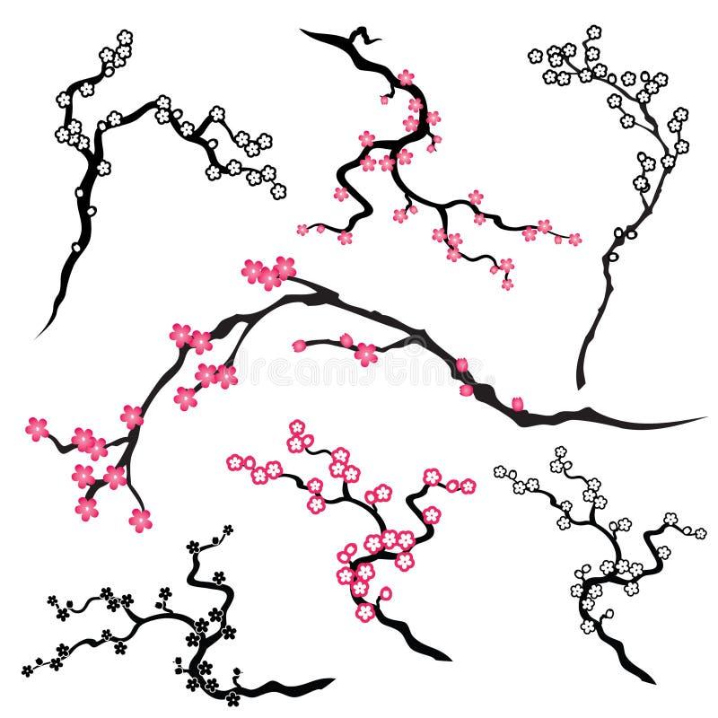 Cherryblomning royaltyfri illustrationer