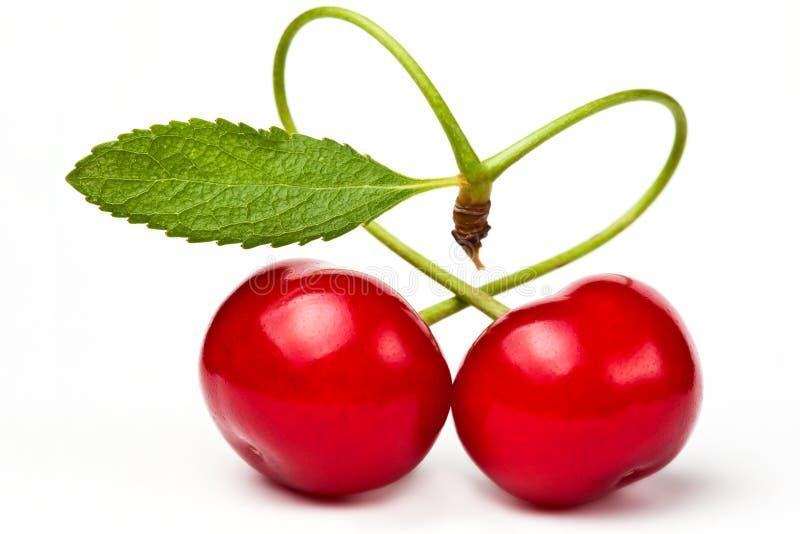 cherryes夫妇重点爱红色 库存照片