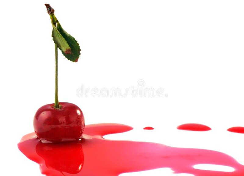 Cherryfruktsaft royaltyfri foto