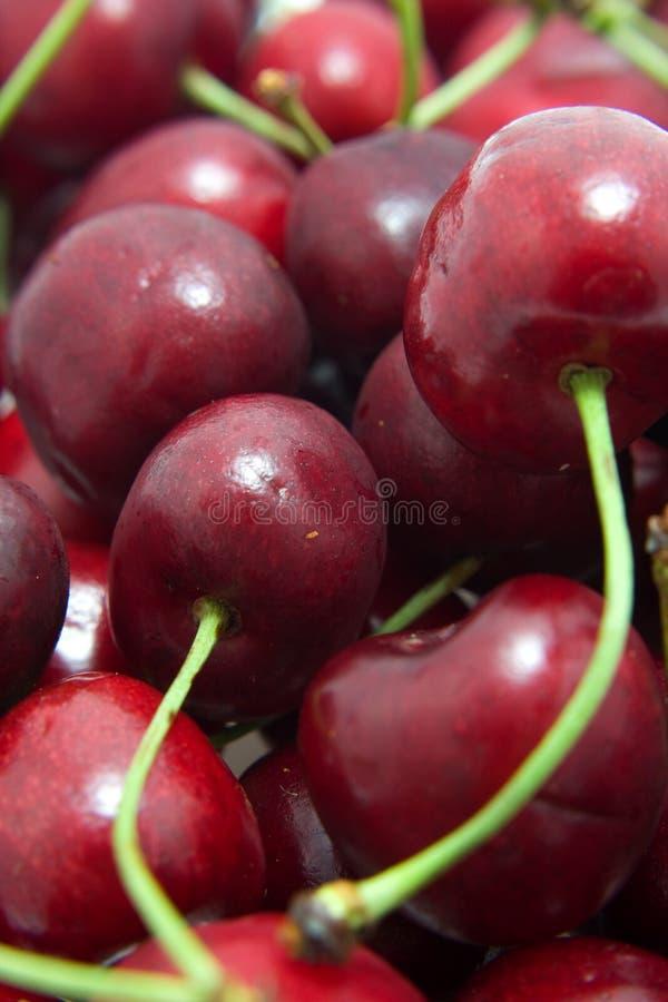 Cherrymakrored arkivbilder