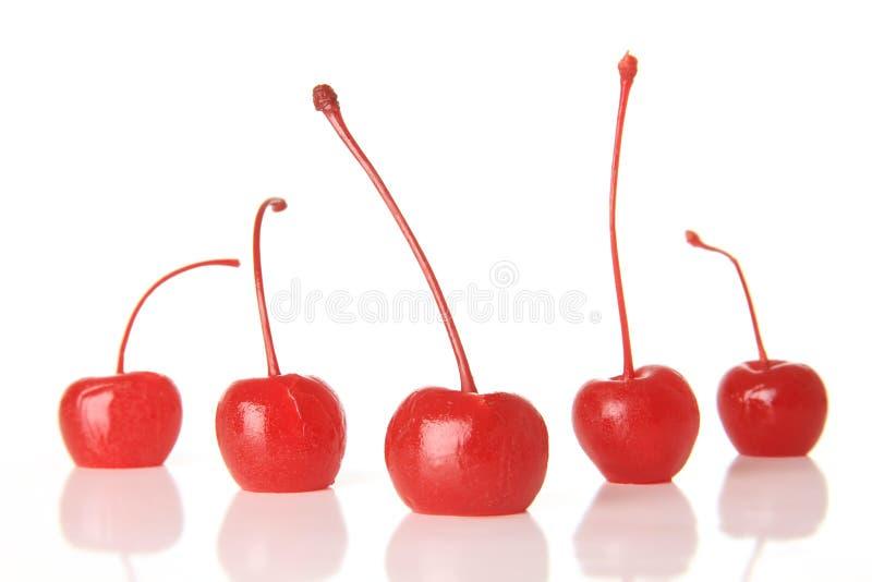 Cherrymaraschino arkivfoto