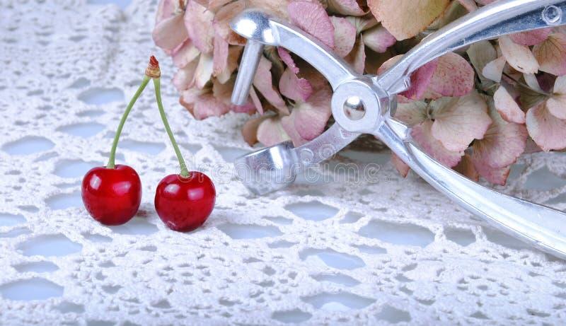 Cherrys stock images
