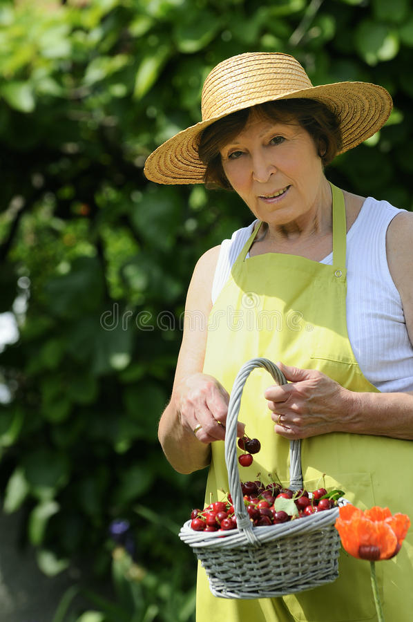 Cherrys woman stock images