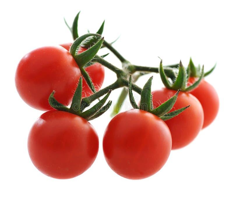 Cherrytomat royaltyfria foton