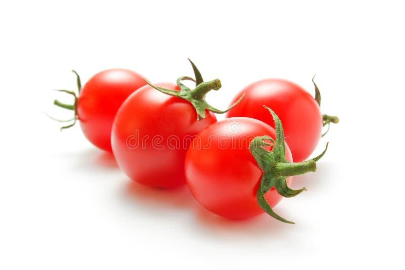 Cherrytomater royaltyfria bilder